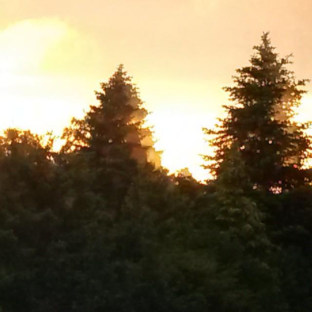 Die Sonne taucht auf.