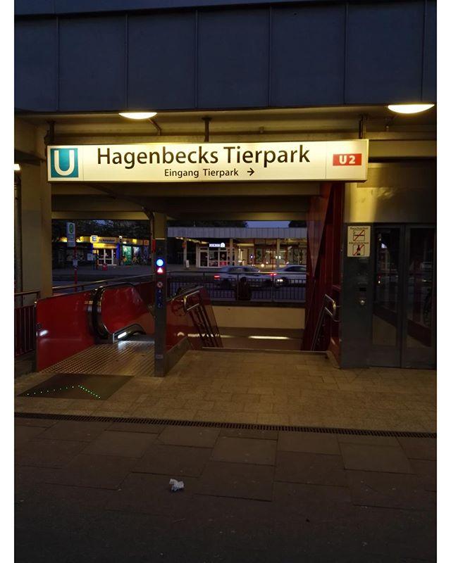 #ubahn #hagenbeck #tierpark #rolltreppe