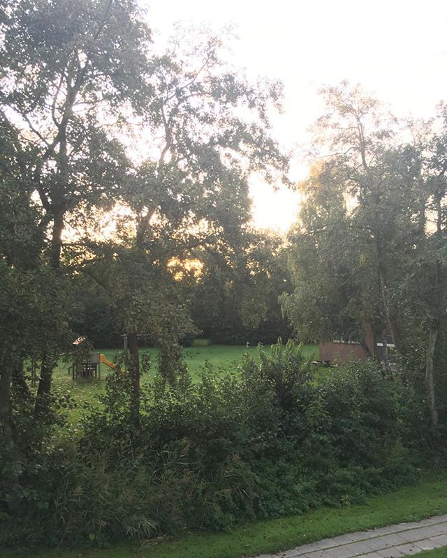 Sonne am Morgen #sonne