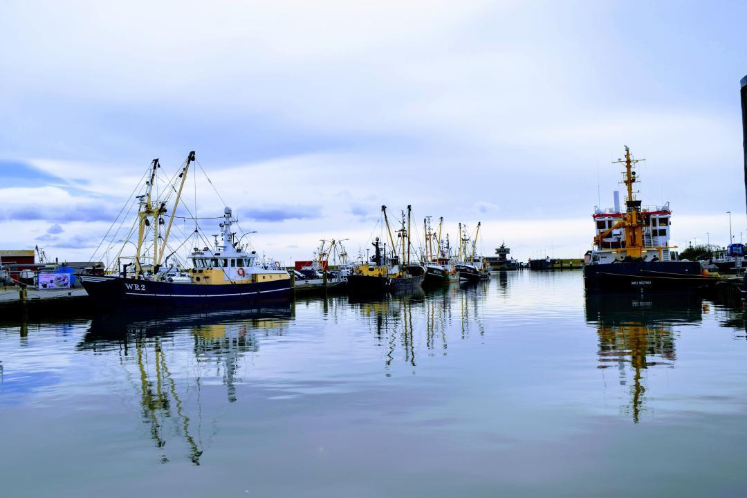 Der Büsumer Hafen bei ruhigem Wetter, vor Jahren.The Büsum harbour in calm weather, years ago.#büsumer #hafen #wetter #jahren #see #wasser #nordsee #schiffe #schiff #fischer #ruhigesee #harbour #weather #years #sea #water #north sea #ships #ship #fisher #calmsea