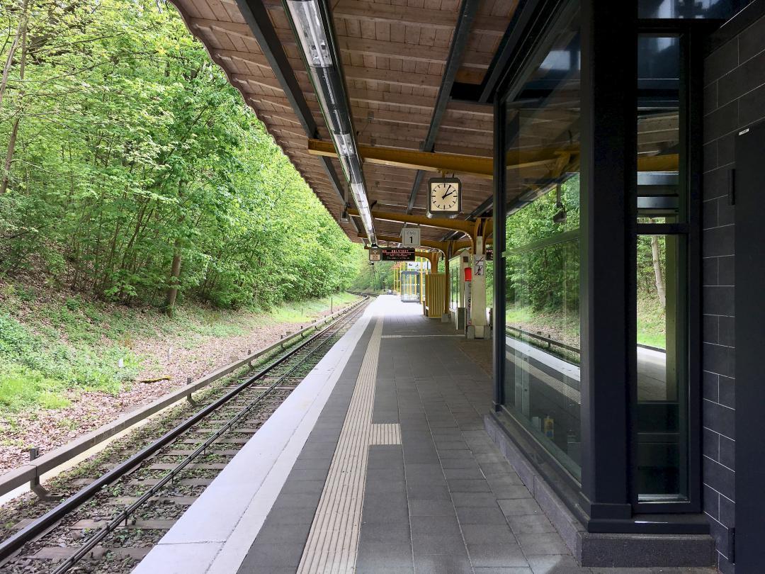 Der U-Bahnhof Buckhorn, ist der U-Bahnhof in Hamburg, der am wenigsten benutzt wird. Hier steigen einfach ganz wenige Menschen ein und aus. Deswegen ist es dort immer ziemlich still, nicht nur jetzt.The underground station Buckhorn, is the least used underground station in Hamburg. That's why it's always pretty quiet there, not just now.#UBahnhof #Buckhorn #Bahnhof #Hamburg #hh #hh_lieben #Menschen #bahn #gleise #uhr #unterwegs #fahrstuhl #bäume #subway #hh_love #people #train #tracks #clock #underway #lift #trees