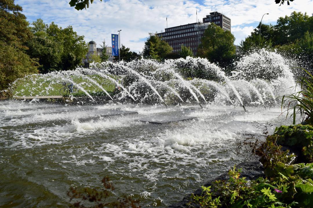 Wasserspiele in Planten und Blomen mit einem wunderschönen Sommerhimmel.Water games in Planten and Blomen with a beautiful summer sky.#Wasserspiele #Planten #Blomen #wunderschönen #Sommerhimmel #hamburg #hh #hh_lieben #wasser #himmel #sommer #pflanzen #plantenblomen #watergames #plants #blom #beautiful #summersky  #hh_love #water #sky #summer #plant #plantsblom #nature