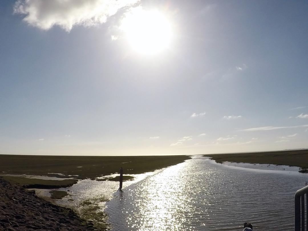 Am Tag des Meeres nicht am Meer zu sein, wäre eine Schande. So kam es heute dann zu diesem Bild am Meer.Not being at sea on the day of the sea would be a disgrace. That's how this picture by the sea came about today.#TagdesMeeres #meer #Schande #Bild #dithmarschen #wesselburenkoog #salzwiesen #wasser #sonne #nordsee #schlick #dayofthesea #sea #shame #image #saltmiesen #water #sun #northsea #silt